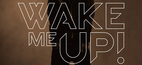 """Avicii - Wake Me Up"" Rekorde"