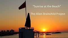 The Alien Brainchild Project - Sunrise at the Beach