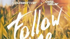 Pulsedriver & Chris Deelay - Follow Me