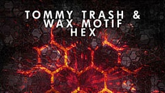 Tommy Trash & Wax Motif - HEX