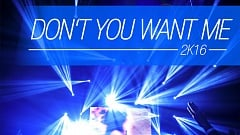K.K. Project - Don't You Want Me 2k16
