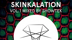 Skinkalation Vol. 1 - Mixed By Showtek