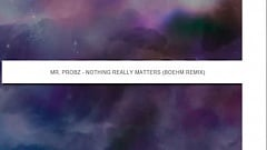 Mr. Probz - Nothing Really Matters (Boehm Remix) [Free Download]