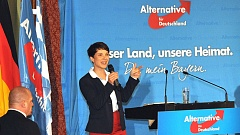 AfD will fremdsprachige Songs aus dem Radio verbannen