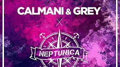 Calmani & Grey x Neptunica feat. Ria - Can't Let You Go