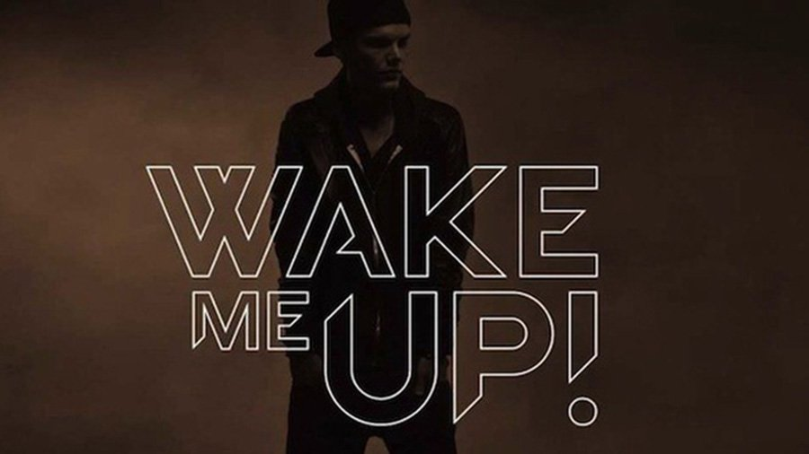 Avicii steigt mit 7 Songs in den Single Charts ein