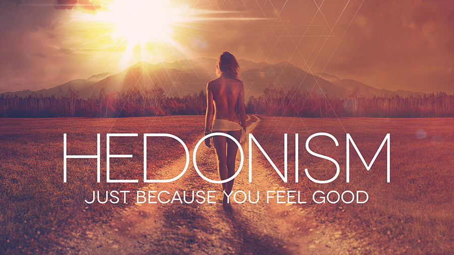 Sunny Rockit feat. Ariane - Hedonism (Just Because You Feel Good)