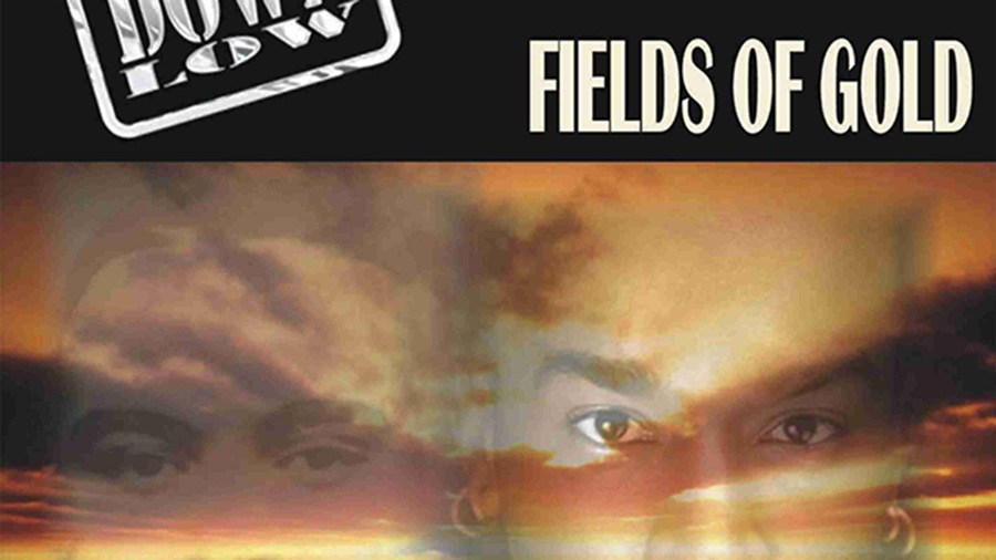 Down Low - Fields of Gold