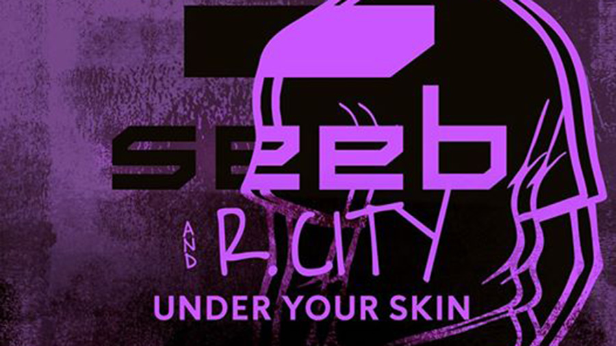 Seeb feat. R. City - Under Your Skin