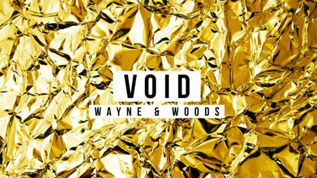 Wayne & Woods - Void