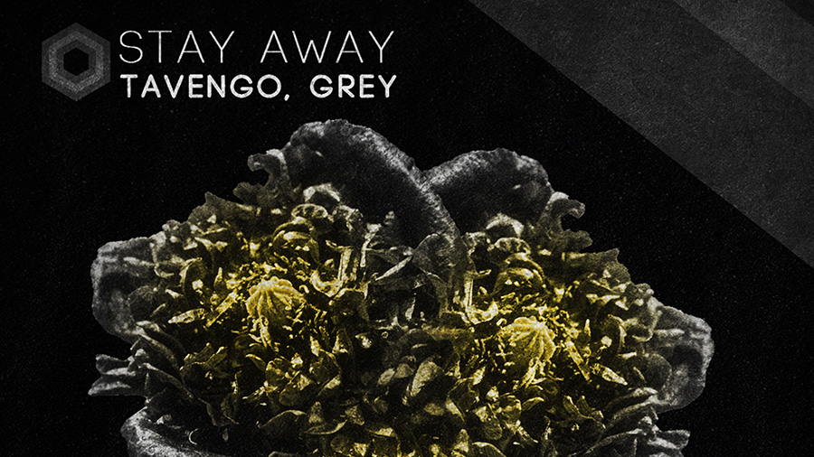 Tavengo, Grey - Stay Away