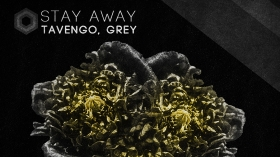 Neu in der DJ-Promo: Tavengo, Grey - Stay Away