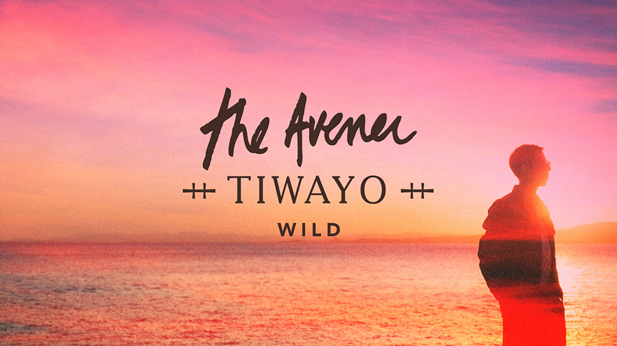 The Avener feat. Tiwayo - Wild