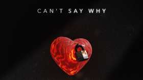 Josh Bogert x Laust x UM41K - Can't Say Why