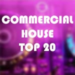 COMMERCIAL HOUSE TOP 20