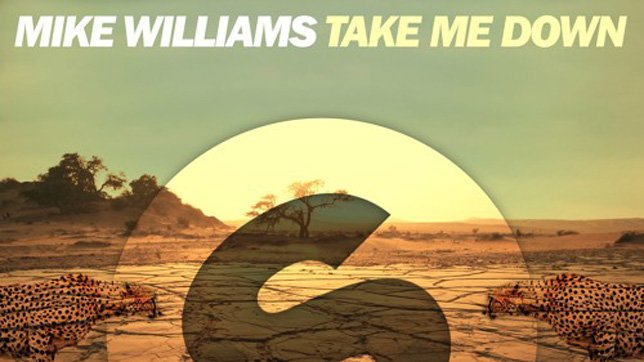 Mike Williams - Take Me Down