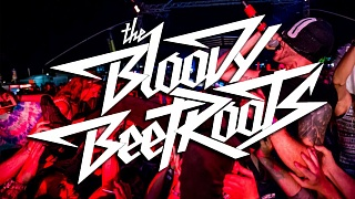 The Bloody Beetroots im Interview