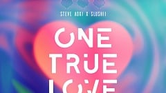 Steve Aoki x Slushii - One True Love