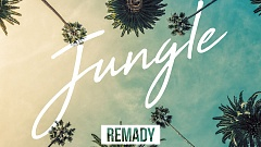 Remady & Bright Sparks - Jungle