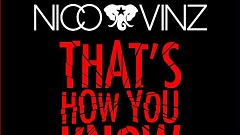 Nico & Vinz feat. Bebe Rexha & Kid Ink - That's How You Know (Remixes)