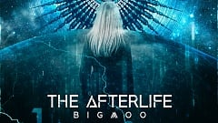 Bigmoo - The Afterlife