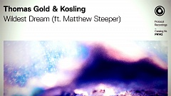 Thomas Gold & Kosling feat. Matthew Steeper - Wildest Dream