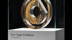 Tom Tyger & Melsen - I Need U