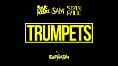 Sak Noel & Salvi feat. Sean Paul - Trumpets
