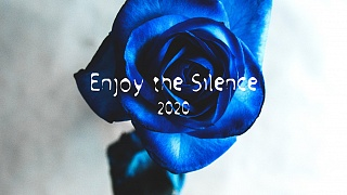 Alex Zind feat. Stella von Lingen - Enjoy the Silence 2020