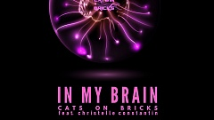 Cats On Bricks - In My Brain